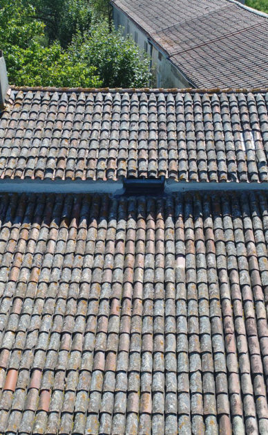 building sector - roof inspection made for a roofer