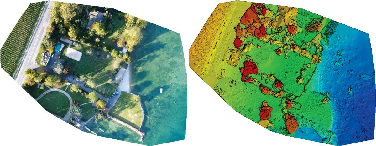 Orthomosaïque d'une zone naturelle en bord de lac - orthomosaic of a natural zone