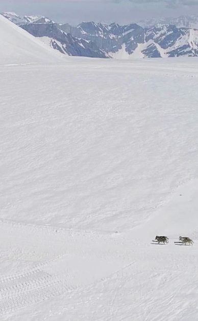 Suisse Tourisme - Swiss Tourism : Glacier 3000